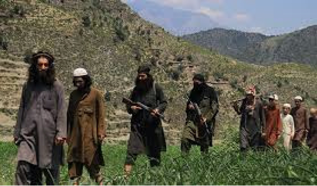 Hundreds of Daesh Rebels  Emerge in Kunar: Police Chief