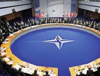NATO to Plan for  All Options, Including No Troops