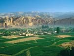 Agriculture and Forestry  in Afghanistan